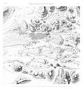 A Vol. I — Île d'Éléphantine et Syène — Pl. 31 - Plan général de l'île d'Éléphantine, de Syène, et des carrières de granit exploitées par les anciens égyptiens