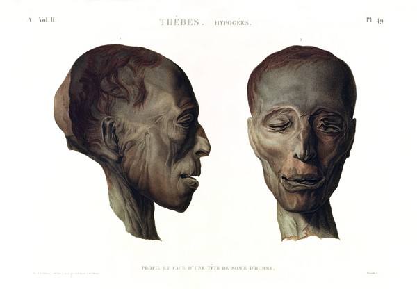 A Vol. II — Thèbes. Hypogées — Pl. 49