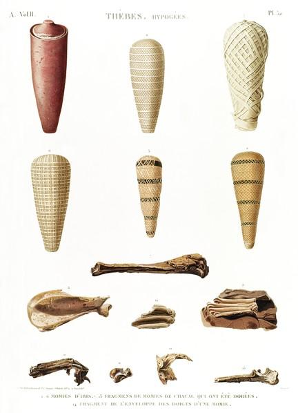 A Vol. II — Thèbes. Hypogées — Pl. 52