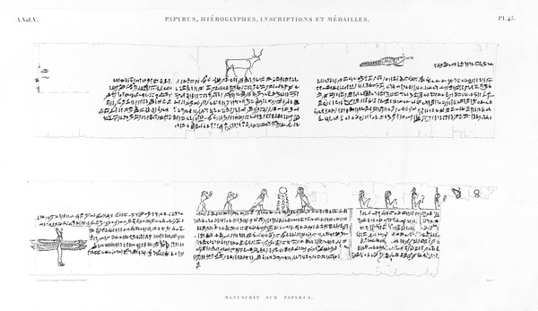 A Vol. V — Papyrus, hiéroglyphes, inscriptions et médailles — Pl. 45
