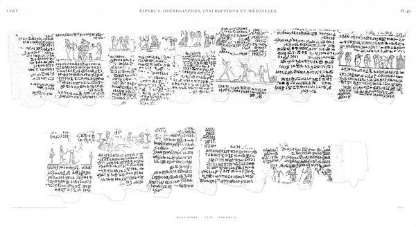A Vol. V — Papyrus, hiéroglyphes, inscriptions et médailles — Pl. 46