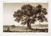 EM Vol. I — Le Kaire — Pl. 44 - Vue du jardin et de l'étang de Qasim Bey.