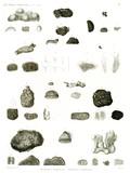 HN Zoologie, zoophytes — Pl. 1 - Éponges charnues. Éponges à piquans